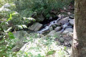 River next to camping at Finca Carpe Diem