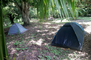 Camping at finca carpe diem