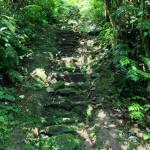 Ciudad Perdida indigenous staircase