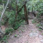 Path to the Mini Cuidad Perdida