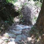 Path before exiting the Mini Cuidad Perdida