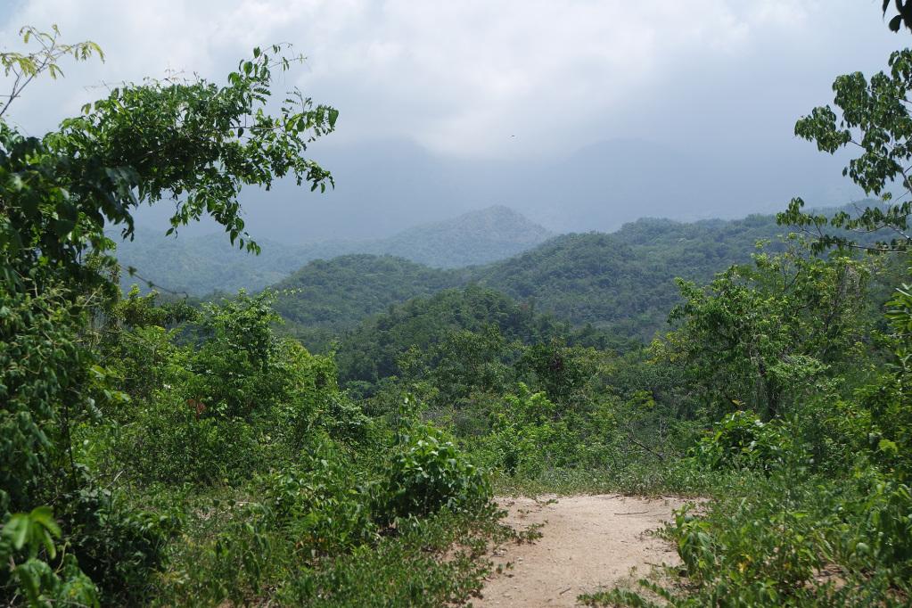 View just before arriving at the Mini Ciudad Perdida Ruins