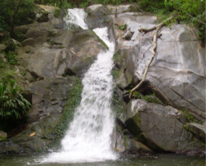Waterfall between Minca and Paso del Mango
