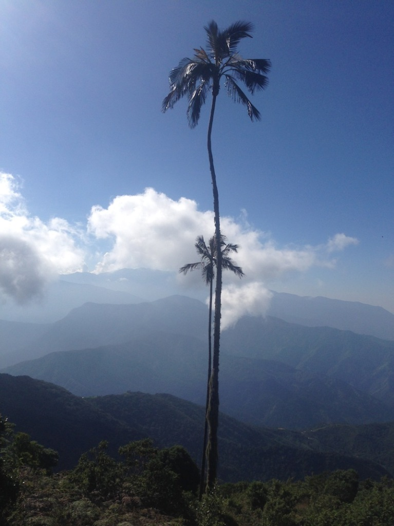 The Sierra Nevada de Santa Marta, one of the most important nature reserves on the globe, close to Paso del Mango