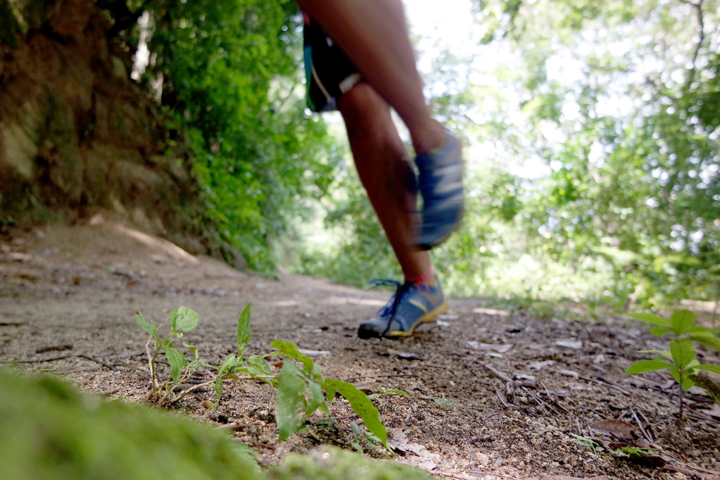 Why hiking between Paso del Mango and Minca, if you can also run?