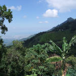 View from Finca La Candelaria