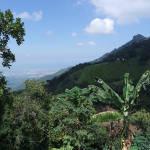 View from Finca La Candelaria