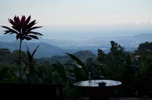 View from Casa Loma, Minca