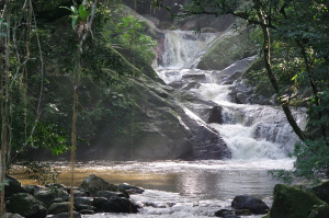 Pozo Azul, one of the things to do in Minca